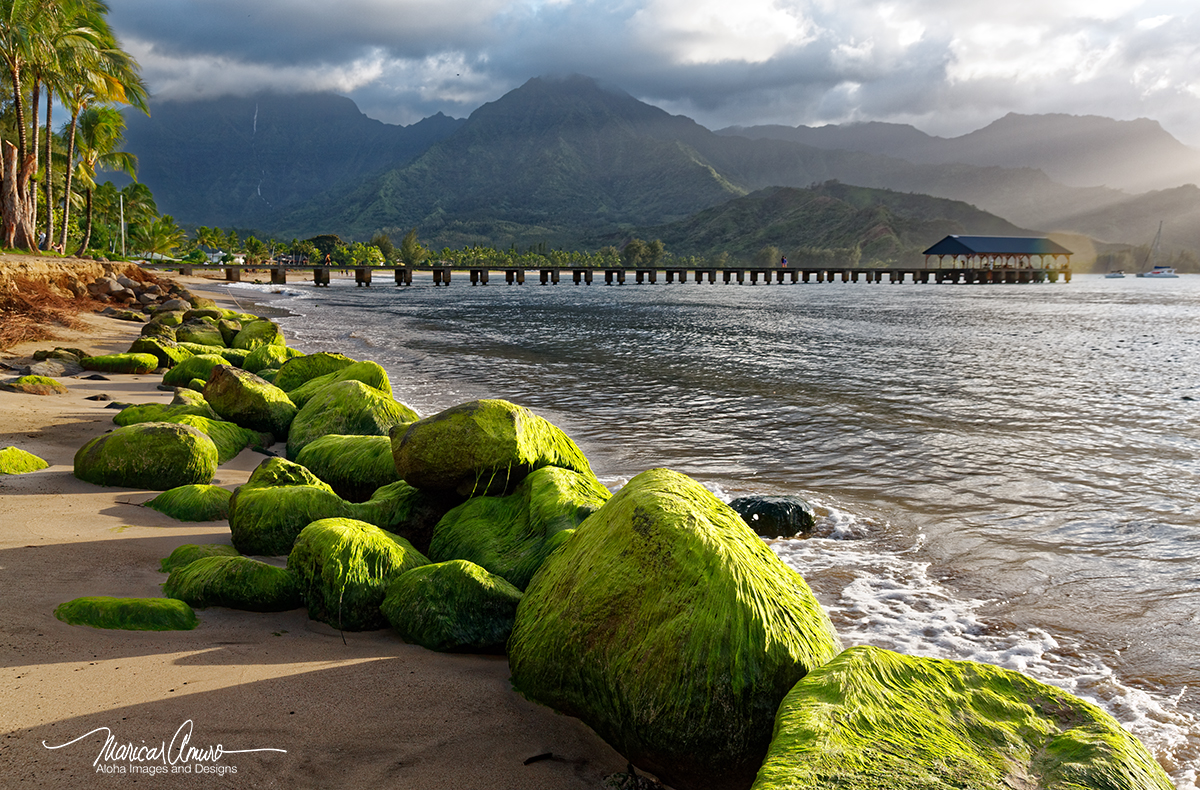 Hanalei Pier Kauai by Maricar Amuro, Aloha Images and Designs