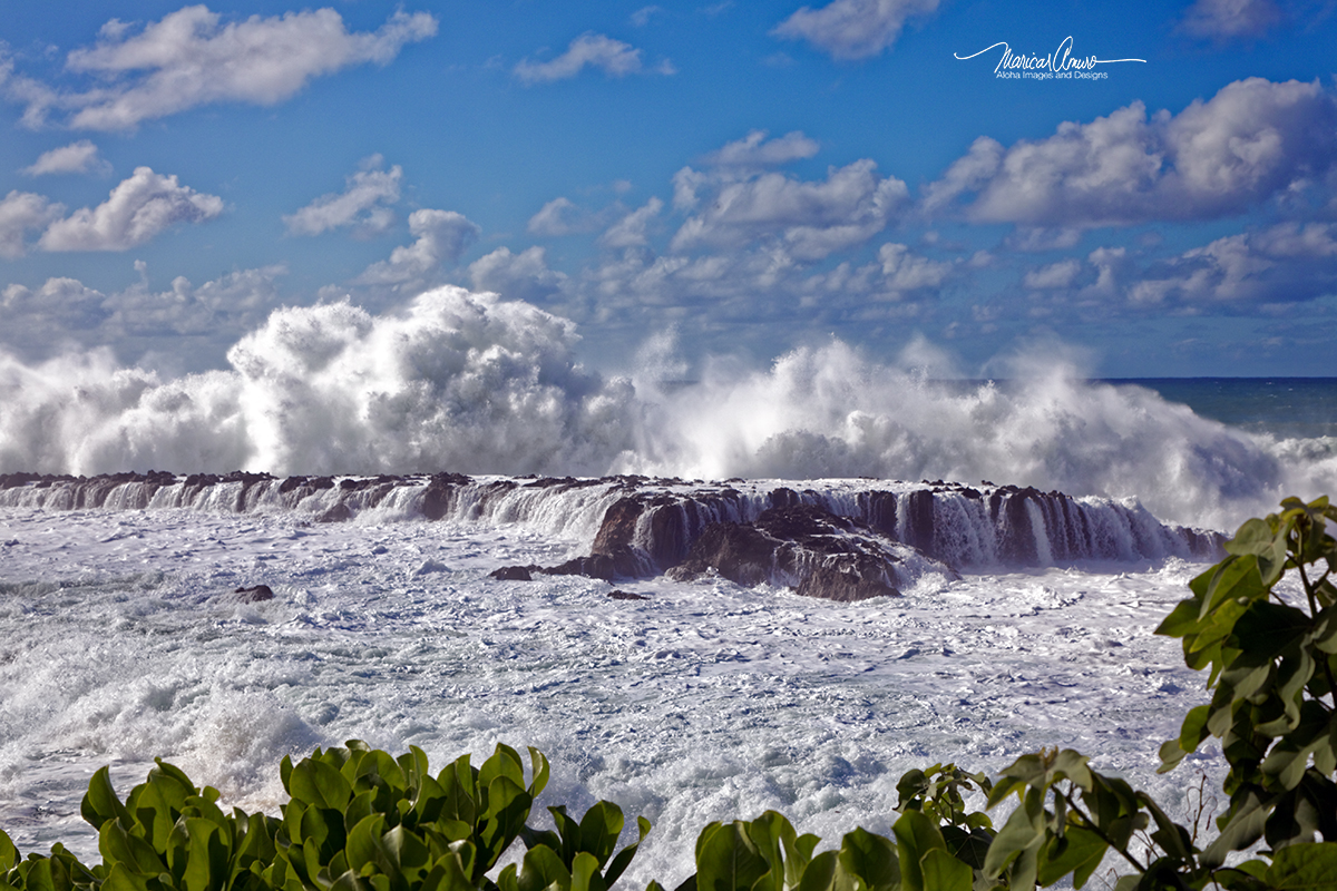 North Shore big waves by Maricar Amuro, Aloha Images and Designs