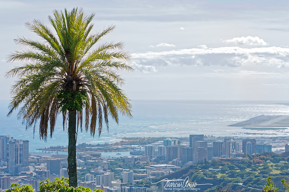 Tantalus Hawaii by Maricar Amuro, Aloha Images and Designs