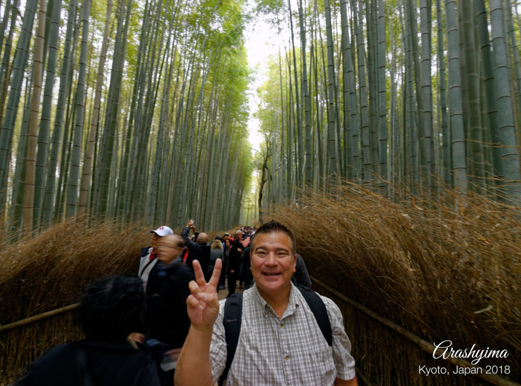Arashyima Bamboo by Maricar Amuro, Aloha Images and Designs